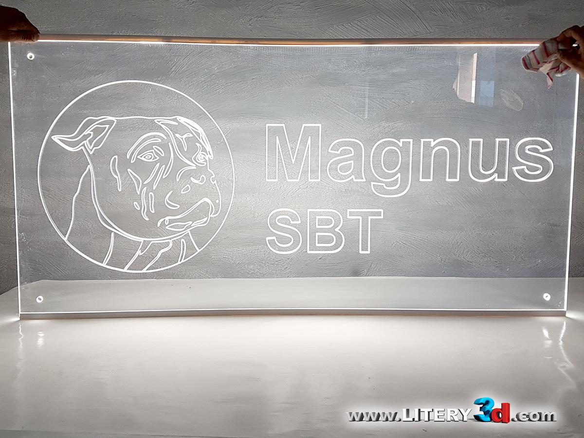 MAGNUS SBT - Legnica