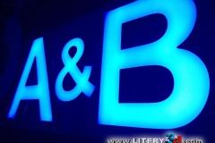 A & B_1