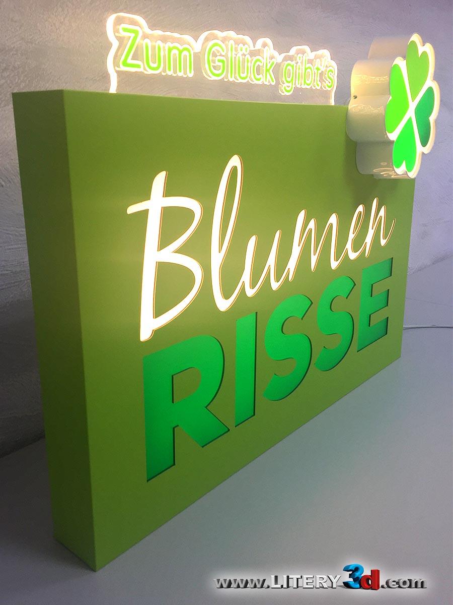 BLUMEN RISSE_5