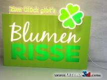 BLUMEN RISSE - Niemcy