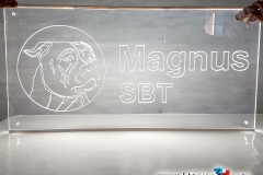 MAGNUS SBT_1