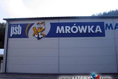 MRÓWKA - Osielec