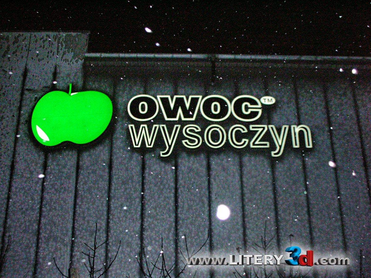 Owoc Wysoczyn_2