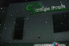 Wilga Fruit_2