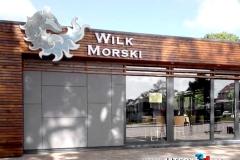 WILK MORSKI - Jarosławiec